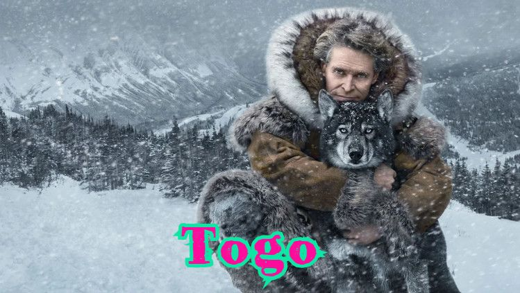 Togo — Horij Film O`zbek Tilida